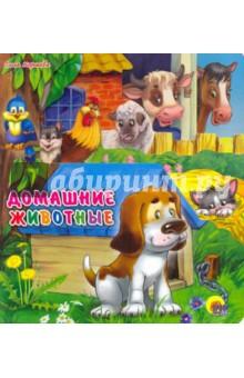 Купить Домашние животные, Проф-Пресс, Знакомство с миром вокруг нас