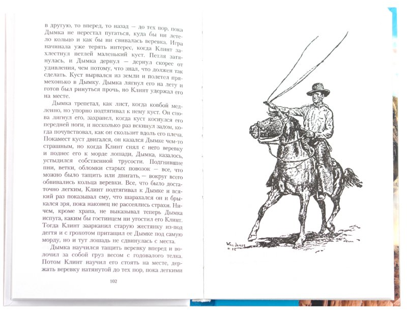 Иллюстрация 1 из 15 для Дымка - Виль Джемс | Лабиринт - книги. Источник: Лабиринт