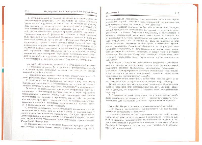 Иллюстрация 1 из 8 для Государственная и муниципальная служба России - Владимир Игнатов | Лабиринт - книги. Источник: Лабиринт