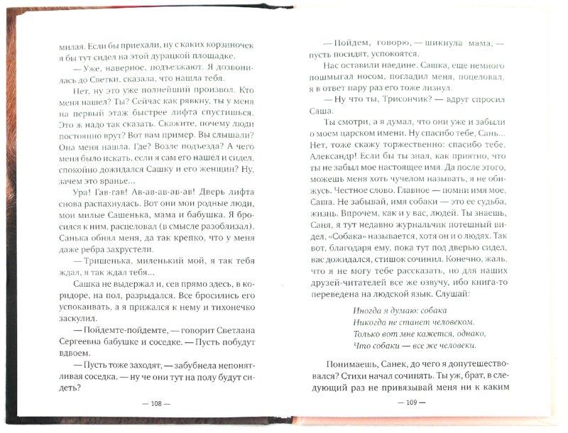 Иллюстрация 1 из 5 для Радуга для друга - Михаил Самарский   Лабиринт - книги. Источник: Лабиринт