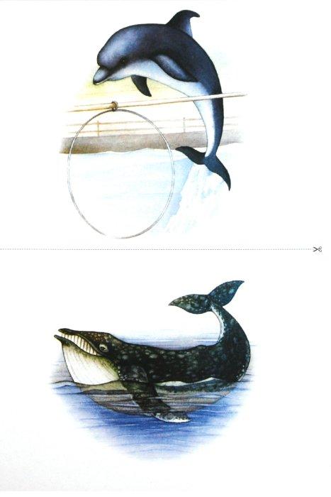 Иллюстрация 1 из 21 для Картотека предметных картинок: Животные жарких и северных стран, животный мир океана - Наталия Нищева | Лабиринт - книги. Источник: Лабиринт