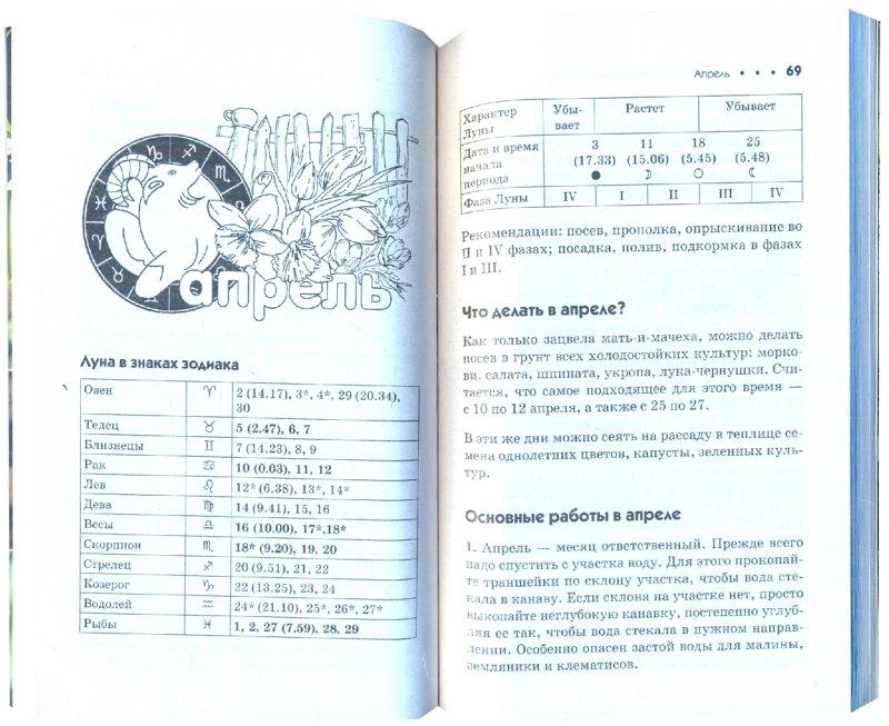 Иллюстрация 1 из 3 для Дачный лунный календарь на 2011 год - Галина Кизима | Лабиринт - книги. Источник: Лабиринт