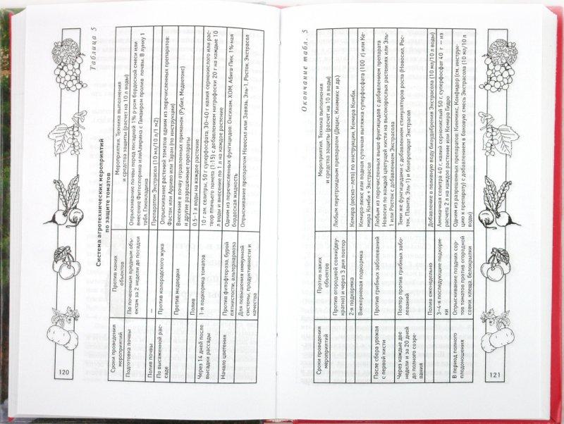Иллюстрация 1 из 4 для Идеальный огород, или Как вырастить рекордный урожай - Валентина Бурова | Лабиринт - книги. Источник: Лабиринт