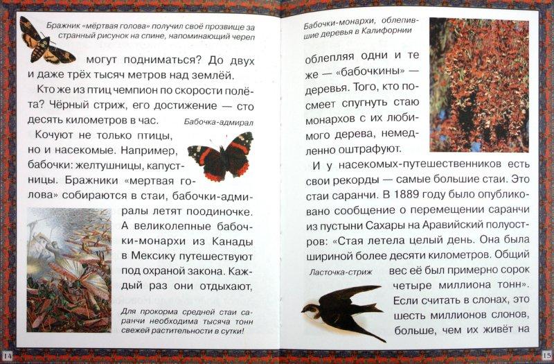 Иллюстрация 1 из 15 для Путешествия животных - Марк Шварц | Лабиринт - книги. Источник: Лабиринт