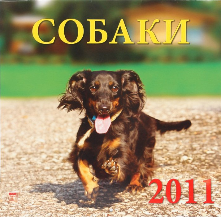 Иллюстрация 1 из 2 для Календарь. 2011 год. Собаки (71020) | Лабиринт - сувениры. Источник: Лабиринт
