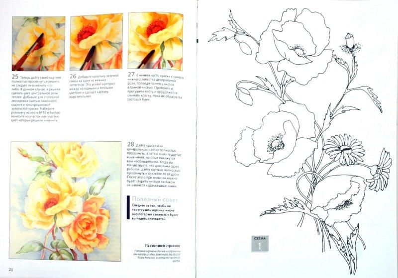 Иллюстрация 1 из 23 для Рисуем по схемам. Цветы. Акварель - Венди Тэйт | Лабиринт - книги. Источник: Лабиринт