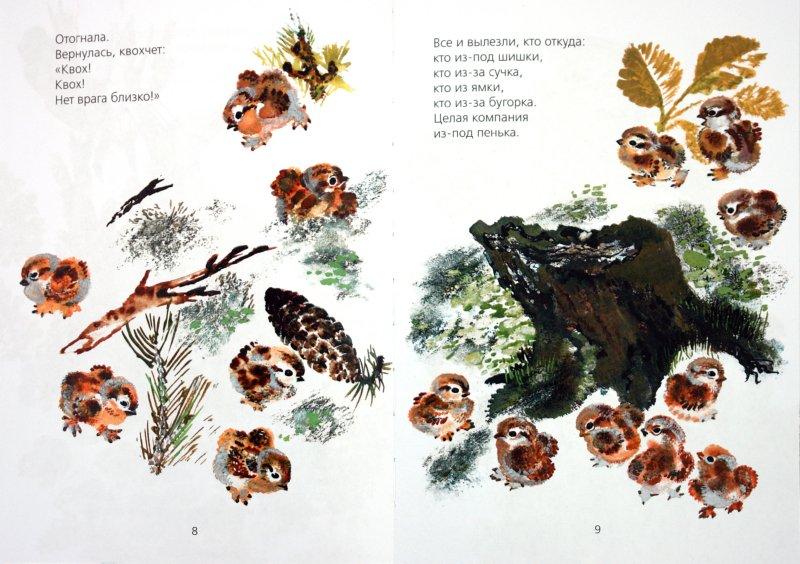 Иллюстрация 1 из 56 для Болтливая сорока - Евгений Чарушин | Лабиринт - книги. Источник: Лабиринт