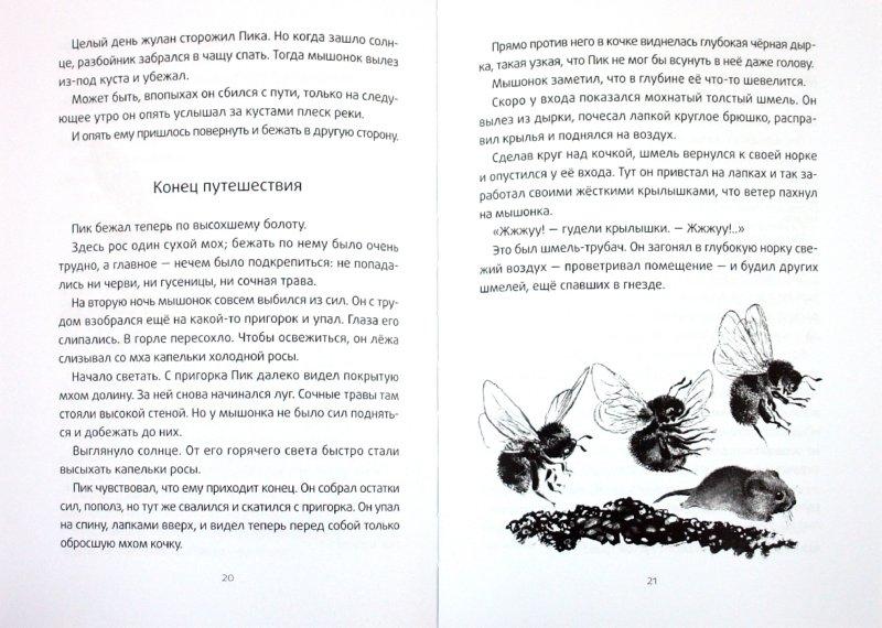 Иллюстрация 1 из 10 для Мышонок Пик - Виталий Бианки   Лабиринт - книги. Источник: Лабиринт