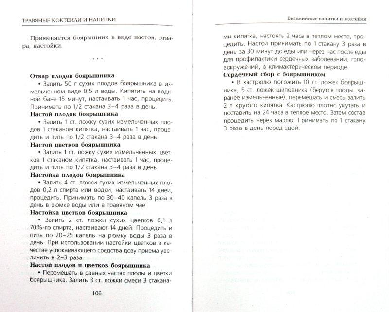Иллюстрация 1 из 9 для Травяные коктейли и напитки - Вера Соловьева | Лабиринт - книги. Источник: Лабиринт