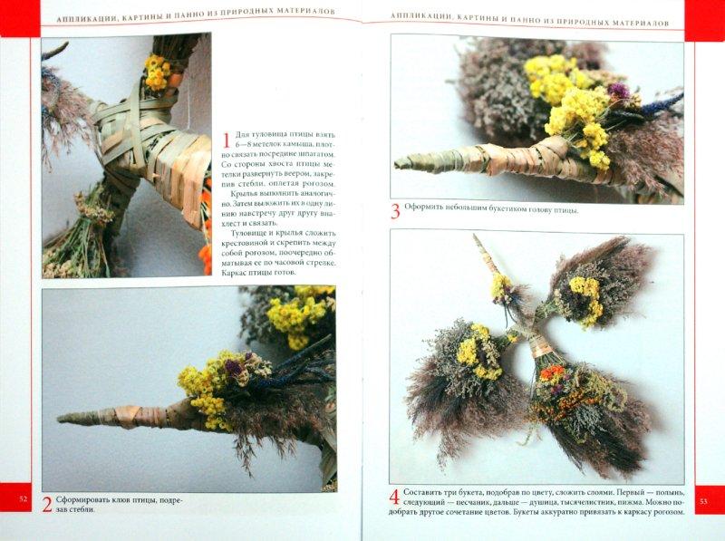 Иллюстрация 1 из 16 для Аппликации, картины и панно из природных материал - Хоменко, Никитюк | Лабиринт - книги. Источник: Лабиринт