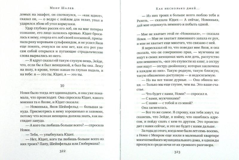Иллюстрация 1 из 10 для Как несколько дней… - Меир Шалев   Лабиринт - книги. Источник: Лабиринт