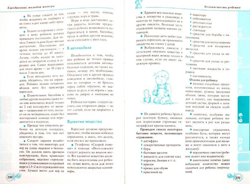 Иллюстрация 1 из 7 для Ежедневник молодой матери - Гречаный, Ходов, Хацкель, Эглит | Лабиринт - книги. Источник: Лабиринт