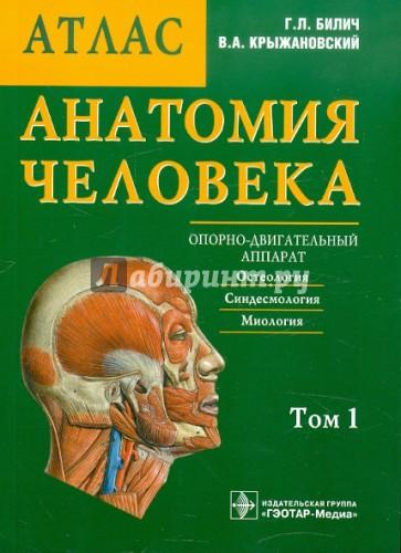 тут Кузька, атлас билича по анатомии 1 том купить спб желанный, священный, нечаянный