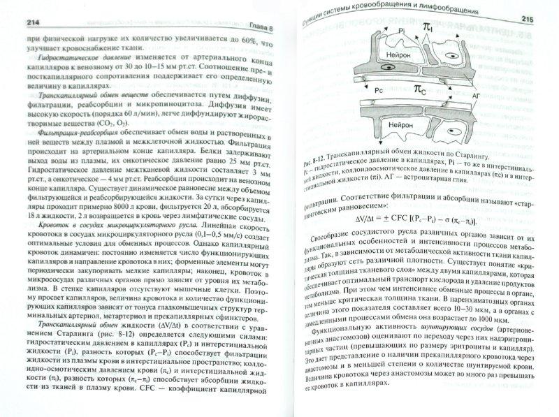 Иллюстрация 1 из 31 для Физиология человека. Compendium - Борис Ткаченко | Лабиринт - книги. Источник: Лабиринт