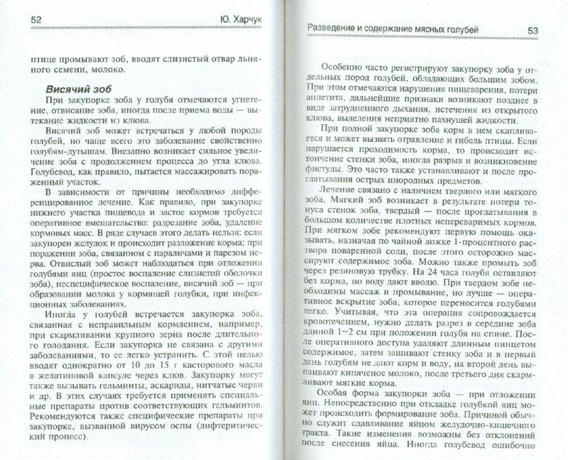 Иллюстрация 1 из 20 для Разведение и содержание мясных голубей в родовой усадьбе - Юрий Харчук | Лабиринт - книги. Источник: Лабиринт