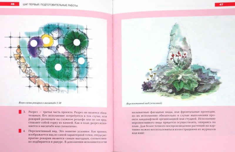 Иллюстрация 1 из 15 для Каменистые сады. Иллюстрированный практикум - Улейская, Кучкина | Лабиринт - книги. Источник: Лабиринт