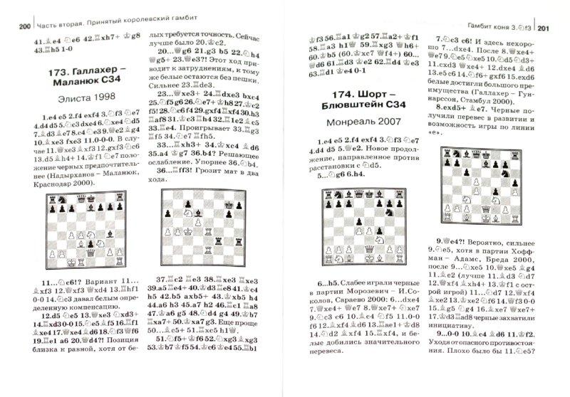 Иллюстрация 1 из 15 для Королевский гамбит - Николай Калиниченко | Лабиринт - книги. Источник: Лабиринт