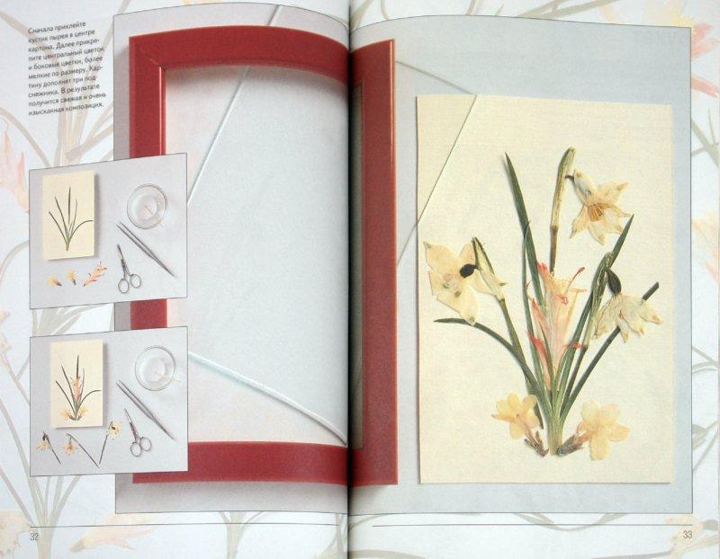Иллюстрация 1 из 29 для Оригинальные картины из цветов и листьев - Анна Лузи   Лабиринт - книги. Источник: Лабиринт