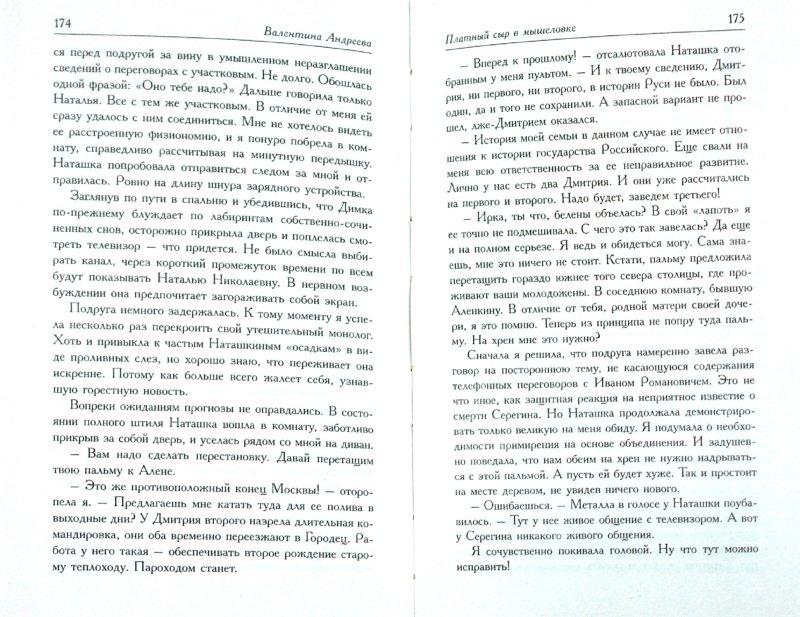 Иллюстрация 1 из 6 для Платный сыр в мышеловке - Валентина Андреева | Лабиринт - книги. Источник: Лабиринт