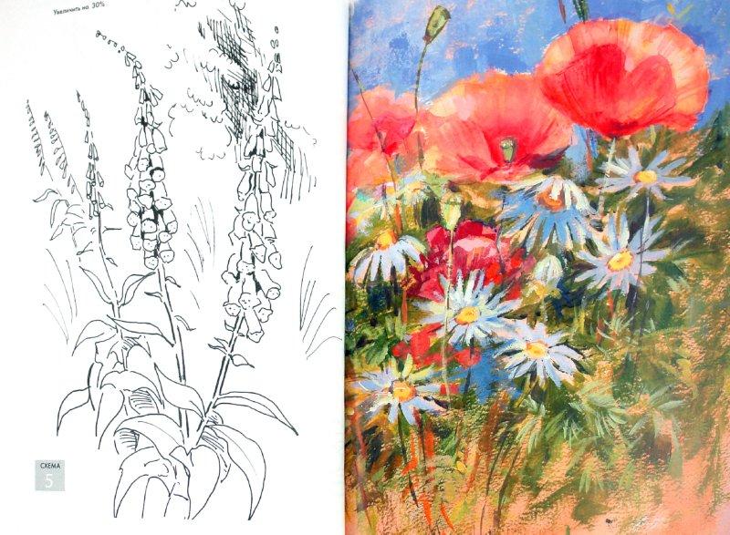 Иллюстрация 1 из 5 для Рисуем по схемам: Цветы: Акрил - Венди Джелберт | Лабиринт - книги. Источник: Лабиринт