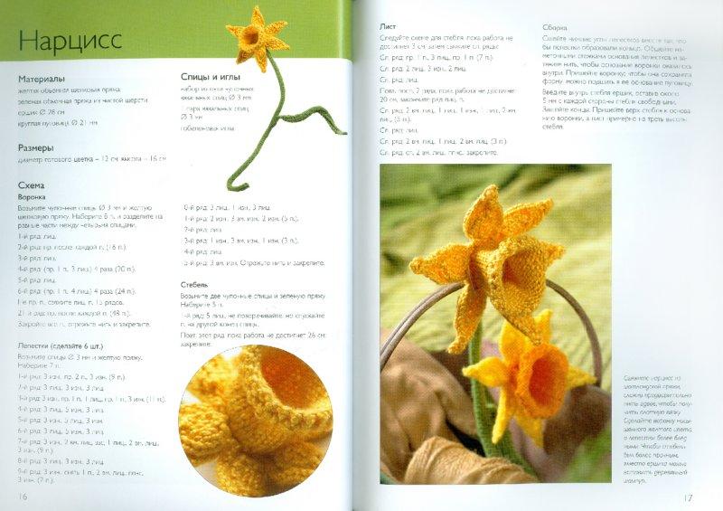 Иллюстрация 1 из 39 для Вязаные цветы: 20 проектов - Сьюзи Джонс | Лабиринт - книги. Источник: Лабиринт