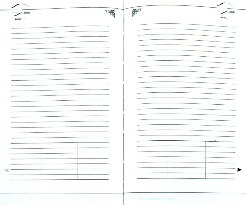 Иллюстрация 1 из 16 для Ежедневник для женщин А5 (3-419/05)   Лабиринт - канцтовы. Источник: Лабиринт