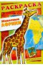 Животные Африк. Книжка-раскраска с наклейками, Андреева А.