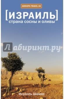 Израиль. Страна сосны и оливы, или Неприметные прелести Святой земли