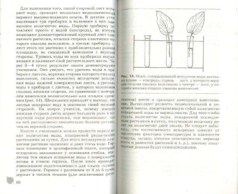 Иллюстрация 1 из 8 для Комнатные растения в школе: наблюдения и эксперименты - Алексей Анциферов | Лабиринт - книги. Источник: Лабиринт