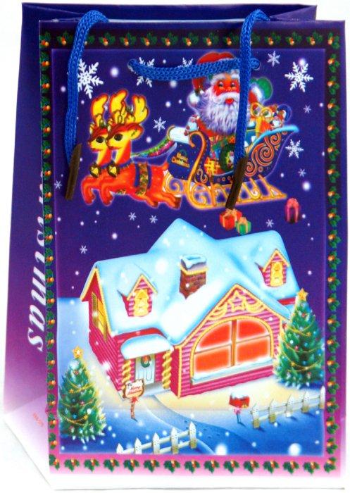 Иллюстрация 1 из 2 для Пакет новогодний пластиковый 17x12x5,5 (LY070702-6) | Лабиринт - сувениры. Источник: Лабиринт