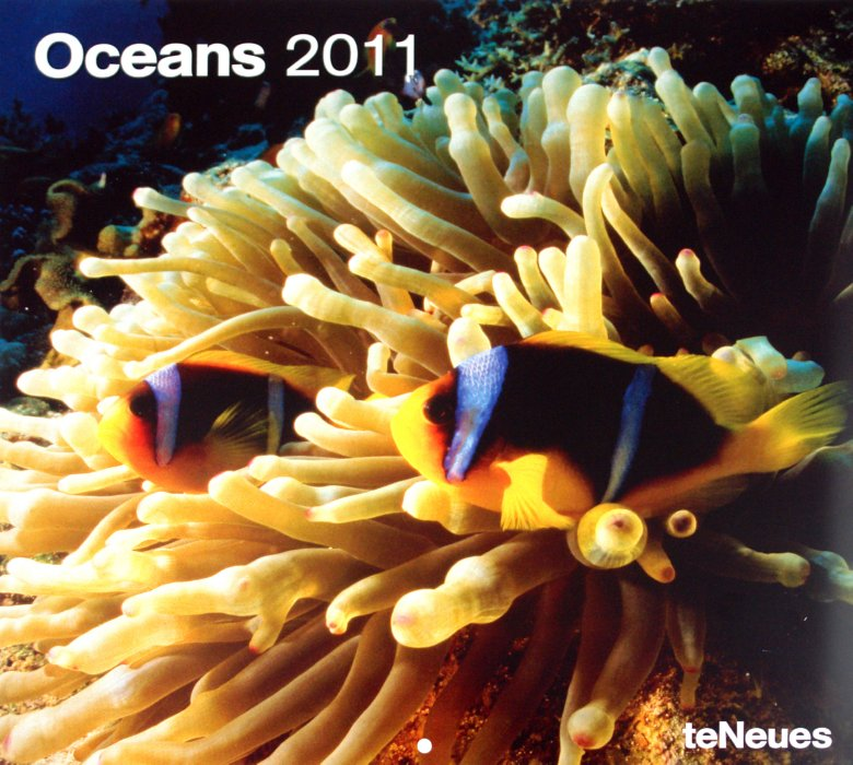 "Иллюстрация 1 из 6 для Календарь 2011"" Океаны"" (4345-1) | Лабиринт - сувениры. Источник: Лабиринт"