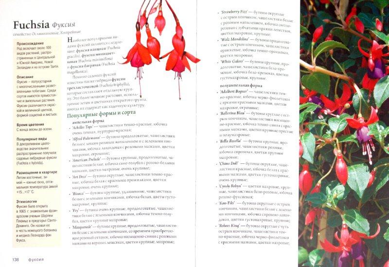 Иллюстрация 1 из 6 для Лучшие комнатные растения. Практическая энциклопедия домашнего цветоводства (+ DVD) | Лабиринт - книги. Источник: Лабиринт
