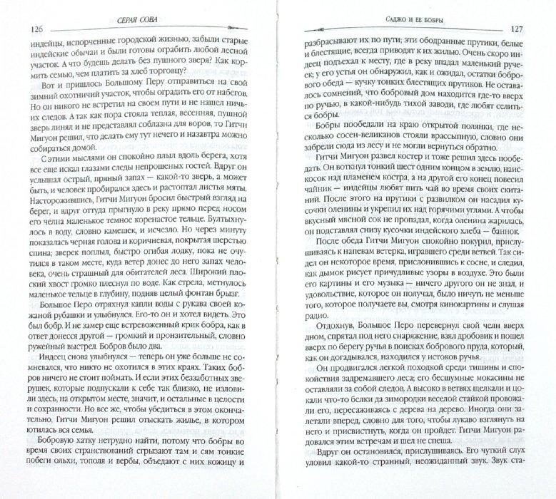 Иллюстрация 1 из 4 для Загадки опустевшей хижины - Сова Серая | Лабиринт - книги. Источник: Лабиринт