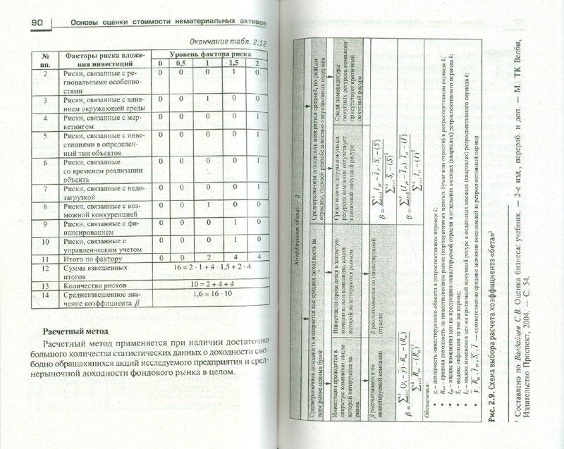Иллюстрация 1 из 5 для Основы оценки стоимости нематериальных активов - Шпилевская, Медведева | Лабиринт - книги. Источник: Лабиринт