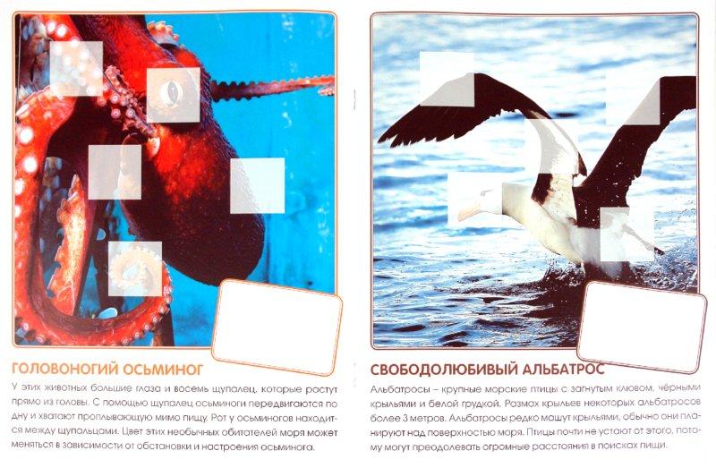 Иллюстрация 1 из 2 для Кто живет в море. Книга с наклейками - Е. Краснушкина | Лабиринт - книги. Источник: Лабиринт