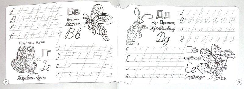 Иллюстрация 1 из 6 для Прописи. Азбука. Насекомые | Лабиринт - книги. Источник: Лабиринт