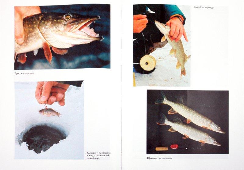 Иллюстрация 1 из 9 для Ловим со льда. Все секреты зимней рыбалки - Владимир Казанцев   Лабиринт - книги. Источник: Лабиринт