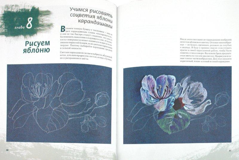 Иллюстрация 1 из 24 для Рисуем цветы (+CD) - Виктория Мазовецкая | Лабиринт - книги. Источник: Лабиринт