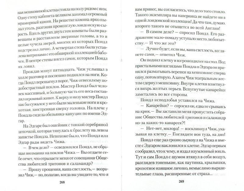 Иллюстрация 1 из 26 для Питер Пэн и Похитители теней - Барри, Пирсон | Лабиринт - книги. Источник: Лабиринт