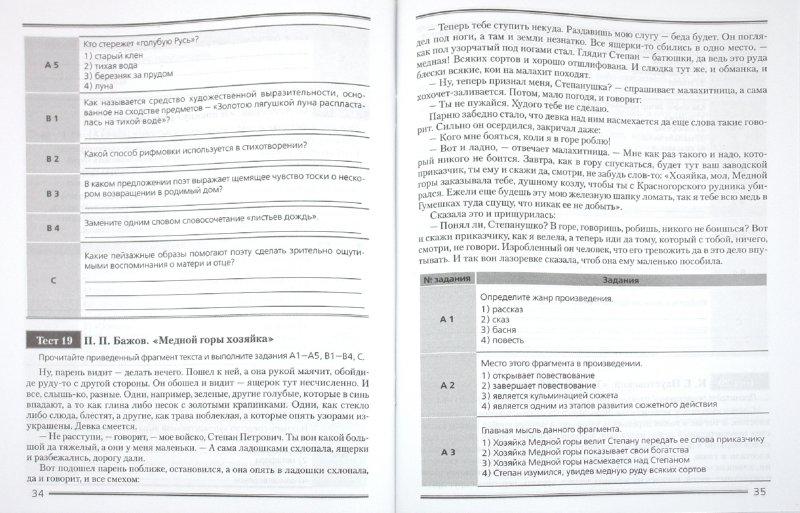 Иллюстрация 1 из 5 для Тесты по литературе для 5 класса. Контрольно-измерительные материалы - Светлана Брагина | Лабиринт - книги. Источник: Лабиринт