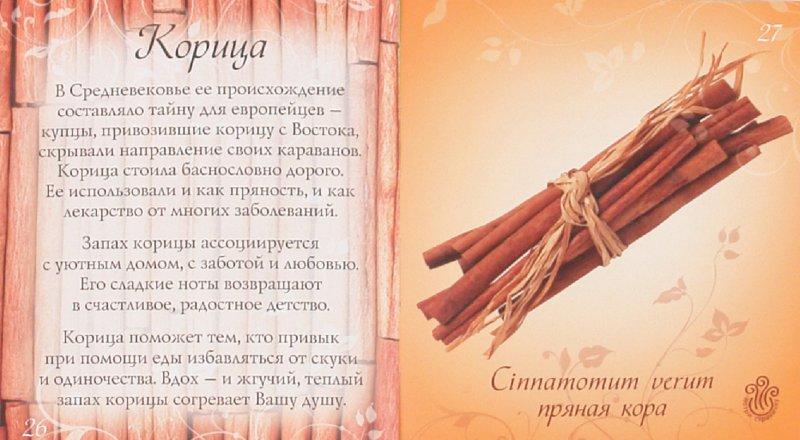 Иллюстрация 1 из 16 для Аромагия: Потри картинки - ощути аромат - создай настроение | Лабиринт - книги. Источник: Лабиринт