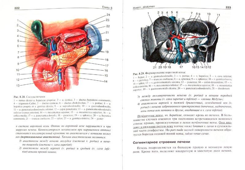 Иллюстрация 1 из 16 для Топографическая анатомия и оперативная хирургия. В 2-х томах. Том 2 - Анатолий Николаев | Лабиринт - книги. Источник: Лабиринт