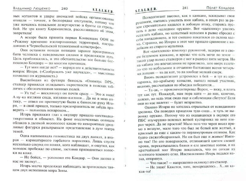 Иллюстрация 1 из 10 для Полет Кондора - Владимир Лещенко | Лабиринт - книги. Источник: Лабиринт