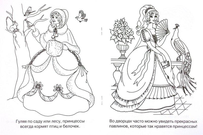Иллюстрация 1 из 21 для Мечты принцесс. Сиреневая книжка. Раскраска   Лабиринт - книги. Источник: Лабиринт