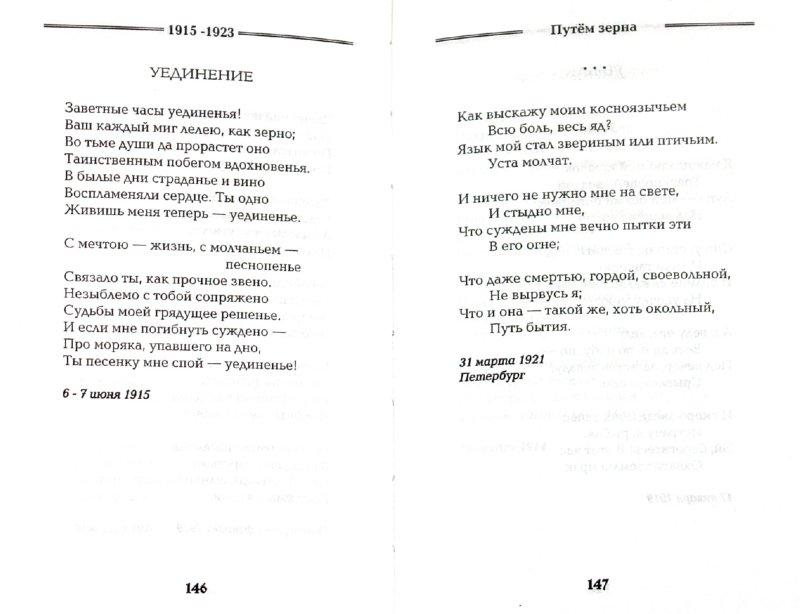 Иллюстрация 1 из 31 для Ходасевич Владислав. Избранное - Владислав Ходасевич   Лабиринт - книги. Источник: Лабиринт