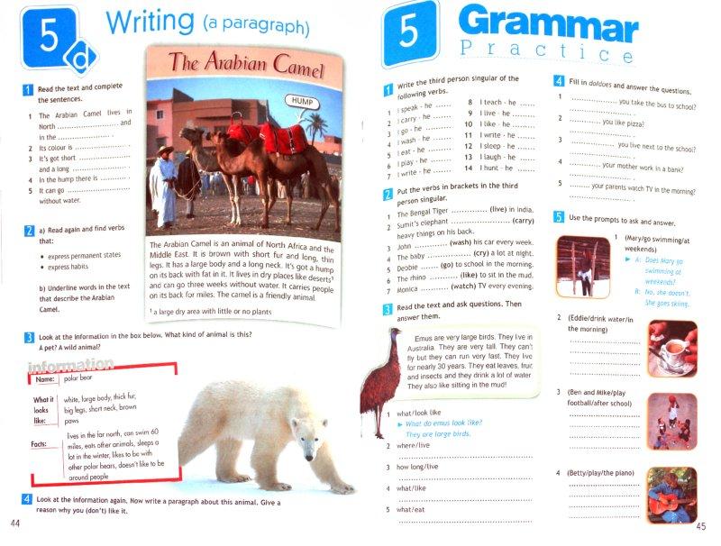 Иллюстрация 1 из 10 для Английский в фокусе. 5 класс: Рабочая тетрадь (+CDmp3) - Ваулина, Дули, Подоляко, Эванс | Лабиринт - книги. Источник: Лабиринт