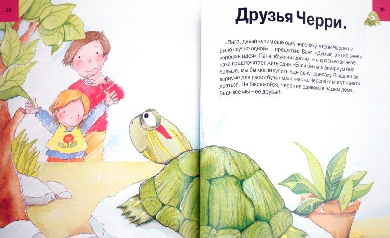Иллюстрация 1 из 8 для Твоя черепаха. Уход за домашним любимцем - Алехандро Альгарра | Лабиринт - книги. Источник: Лабиринт