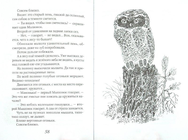 Иллюстрация 1 из 23 для Приключения зайца - Эдуард Шим | Лабиринт - книги. Источник: Лабиринт