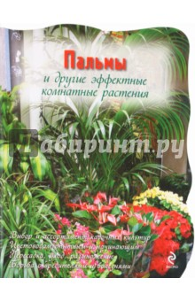 Пальмы и другие эффектные комнатные растения купить 3х комнатные квартиры в подольске по улице вокзальная