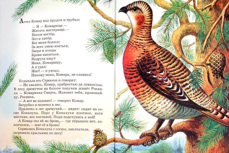Иллюстрация 1 из 23 для Сказки о природе - Виталий Бианки | Лабиринт - книги. Источник: Лабиринт